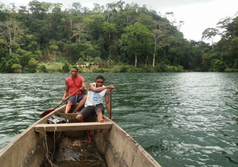 Eco-tourism: Cameroon's Untapped Treasures In The Wild – The