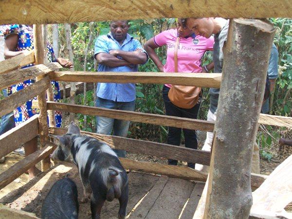 Livelihood Support Improves Endangered Wildlife Conservation In Tofala