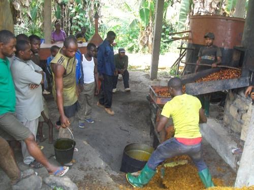 Modern Oil Mills, Improving Living Standards in the Lebialem Highlands