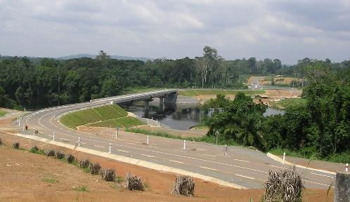 Bamenda-Mamfe-Ekok Road Depleting Biodiversity in Southwest