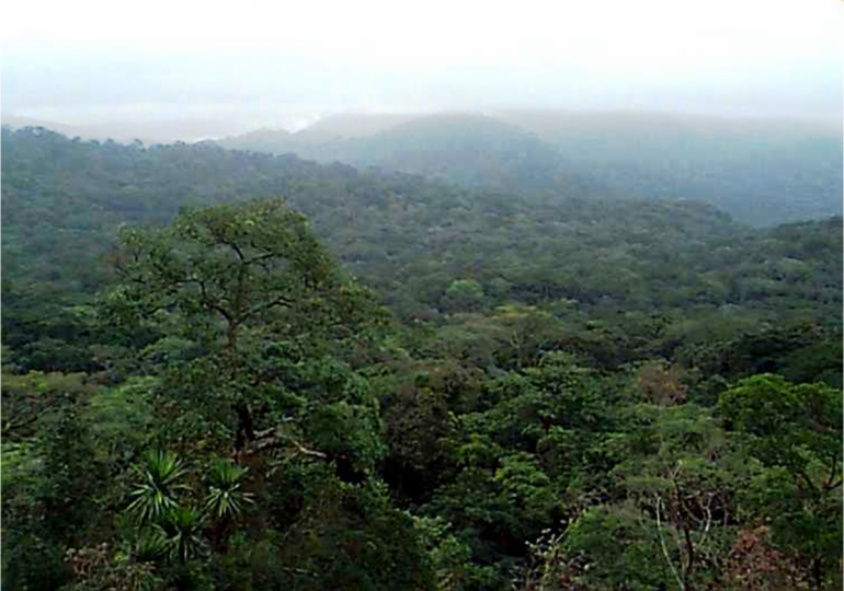 Kimbi Fungom National Park, Prospective Category 1 Protected Area