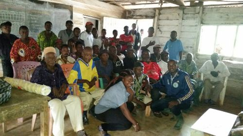 Dryad Project Reinstates Hope In Community Forestry In SW Cameroon