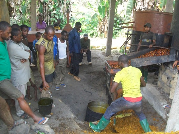 Footprints of Social Business Activities In Lebialem Highlands Conservation Complex