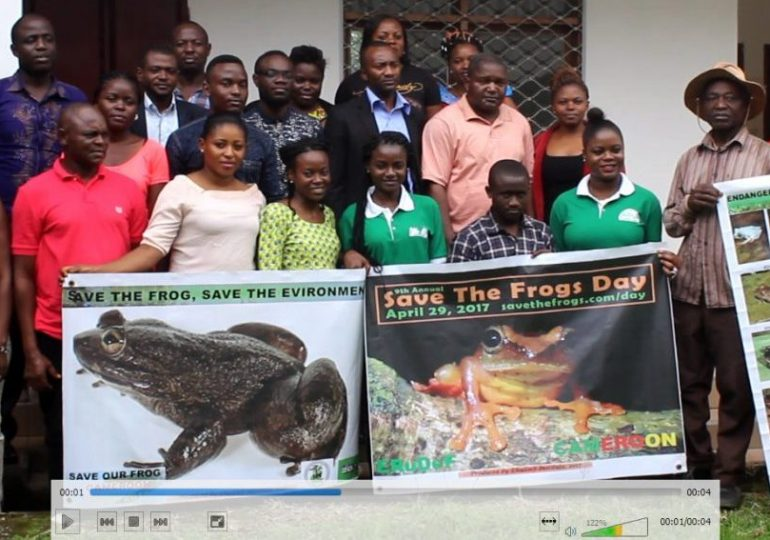 Exigent Actions Needed To Save Frogs in Cameroon