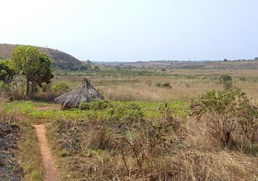 The Adamawa high plateau catchment area under intense modification