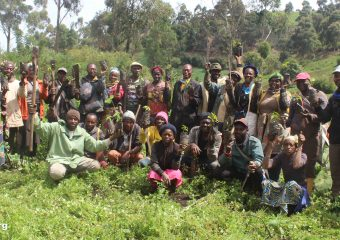 ERuDeF's Fight against Desertification and Droughts