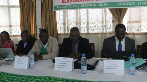 Gov't Creates Technical Committee for Tofala Management Plan Elaboration