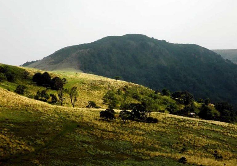 Mount Oku: A Veritable Biodiversity Hotspot