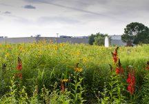 ARIENSCO RECEIVES PRESTIGIOUS WILDLIFE HABITAT COUNCIL CERTIFICATION